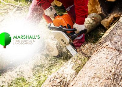 Marshall's-Tree-Service-08