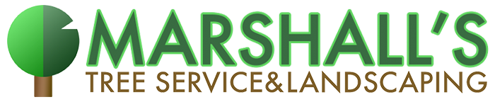 Marshall's Tree Service & Landscaping