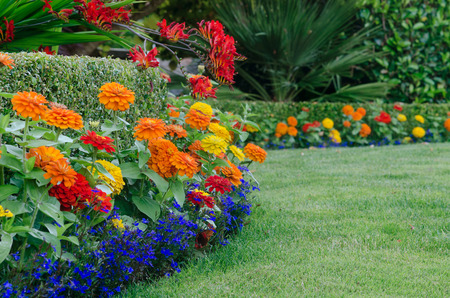 Mangonia Park FL Landscaping & Tree Services
