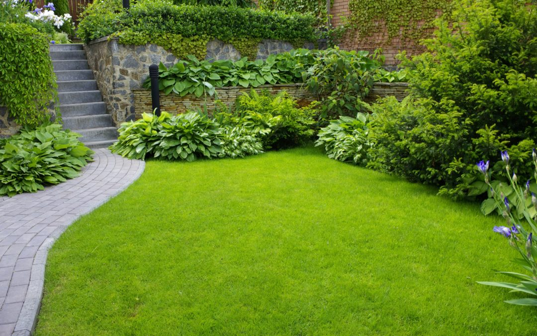 Take Care of Your Landscaping, and It Will Take Care of You