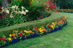 flower landscaping in lantana fl