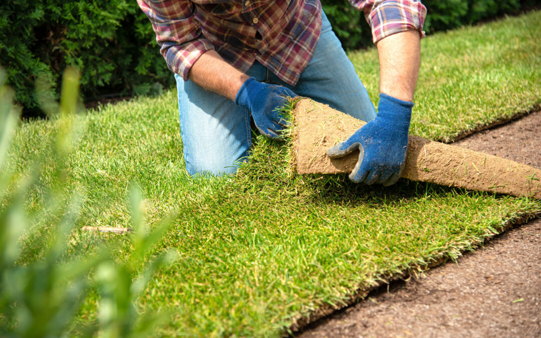 Landscaping Services in Boca Raton, FL